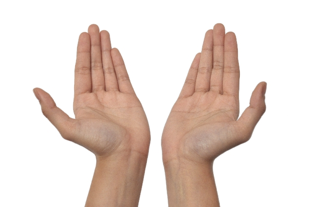 両手のイメージ写真