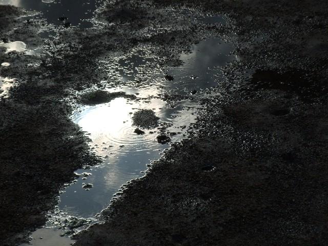 水たまりのイメージ