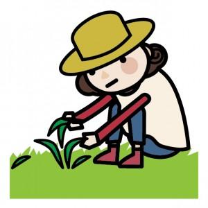 雑草取りのイメージ