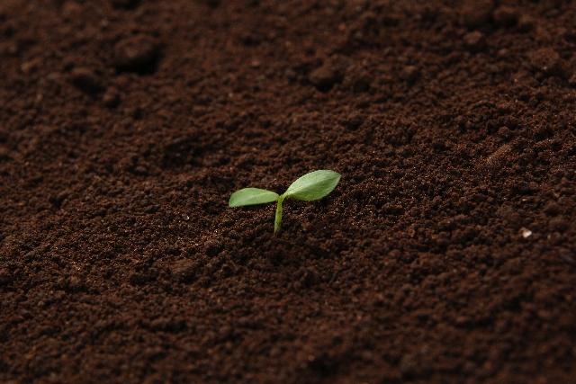 土壌のイメージ