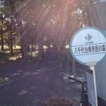 八千代台南市民の森