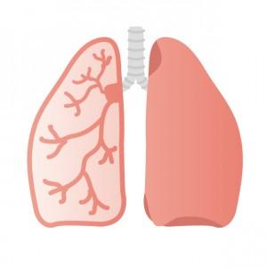 肺がんのイメージ