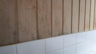 カビが出た浴室の板材